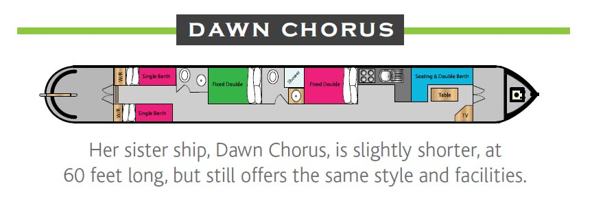 Dawn Chorus Layout